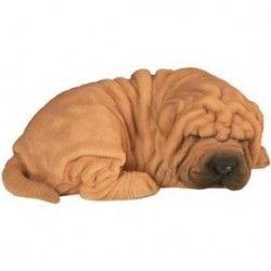 Shar Pei bébé dormant