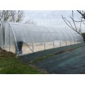 Serre tunnel TOP-600 largeur 6 m