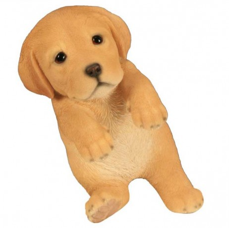 Labrador bébé jouant 18 cm