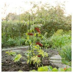 Tuteur triangulaire à tomates