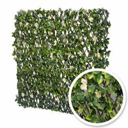 Treillis extensible feuilles de jasmin fleuri
