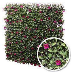 Treillis extensible feuilles bougainvilliers