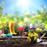 Que faire au jardin au mois d'avril ?