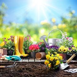 Que Faire Au Jardin Au Mois D Avril Les Conseils D Atout Loisir