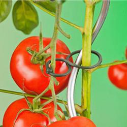 Les ficelles et liens sont indispensables au jardin au fur et à mesure de la croissance des arbres, plants potagers, plantes vertes, tomates ...