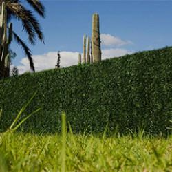 Vous souhaitez protéger votre jardin, terrasse ou balcon des regards indiscrets ? Choisissez une haie artificielle haut de gamme parmi celles que nous avons sélectionné pour vous. Vous aurez la possibilité de choisir une haie artificielle très dense comme cette fausse haie végétale 243 brins, offrant un rendu extrêmement réaliste. La grande densité de ce modèle offre un résultat très occultant. Au delà des modèles classiques à l'aspect proche des thuyas, nous vous proposons également des modèles différents comme cette haie artificielle au feuillage de rosier, ou cet autre modèle au feuillage aspect lierre. Le rendu naturel de nos haies artificielles leur permet de se fondre parfaitement dans votre jardin et donc d'offrir une isolation visuelle aussi discrète qu'efficace. De plus, les différentes tailles que nous proposons nous permettent de répondre aux besoins en haie artificielle les plus variés.L'autre grand intérêt de ces fausses haies est qu'elles ne nécessitent pas d'entretien. Par ailleurs, leur matière les rend souples et agréables au toucher. Enfin, nos produits sont recyclables et leur pose est très simple car la hauteur est adaptable. Besoin d'une haie artificielle ? Faites le choix Atout Loisir pour une qualité maximale.