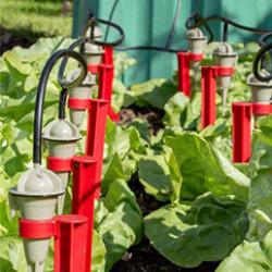 Facilitez-vous l'arrosage de votre jardin, du potager ou de votre serre avec nos kits d'arrosage jardin. Partez en vacances l'esprit tranquille en maîtrisant l'arrosage de vos cultures grâce à nos gammes d'arrosage goutte à goutte.