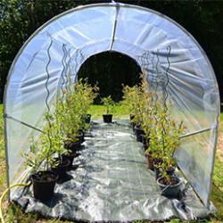 Protégez vos tomates des intempéries et de la maladie et favorisez leur pousse. Nos serre à tomate sont conçues pour durer et vous satisfaire pleinement. Vous allez favoriser la pousse de vos légumes, les protéger de l'humidité et donc de la maladie (comme le mildiou). La bâche de couverture cristal laisse passer un maximum de lumière naturelle. Rien ne vaut les bonnes tomates du jardin ! Nos serres, faciles à monter, sont de fabrication française et de qualité professionnelle.