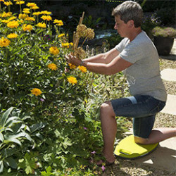 Retrouvez tous les accessoires de jardinier utiles et pratiques pour le jardinage, que ce soit pour le potager ou le jardin d'ornement. Découvrez notre sélection de paniers de récolte, coupe-tout, sécateurs, ou encore lève bêche.