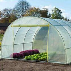 Nos serres tunnel plastiquesont conçues pour des professionnels ou desjardiniers exigeants.Laserre tunnel de jardinest idéale aupotager etpour cultiver efficacement en toutes saisons et plus facilement tous types de fruitset légumes. L'assemblage est facile et unenotice détailléeest fournie.